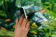 Чистка и уборка аквариумов